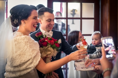 Wedding, Cabra Castle, Dubin, Ireland, 2015